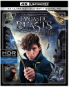 Fantastic Beasts and Where to Find Them (4K Ultra HD Blu-ray)