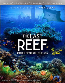 Last Reef, The: Cities Beneath the Sea (4K UHD Review)